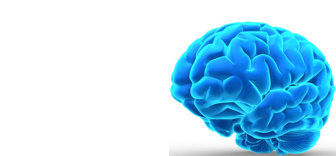 Endoxa Neuroscience