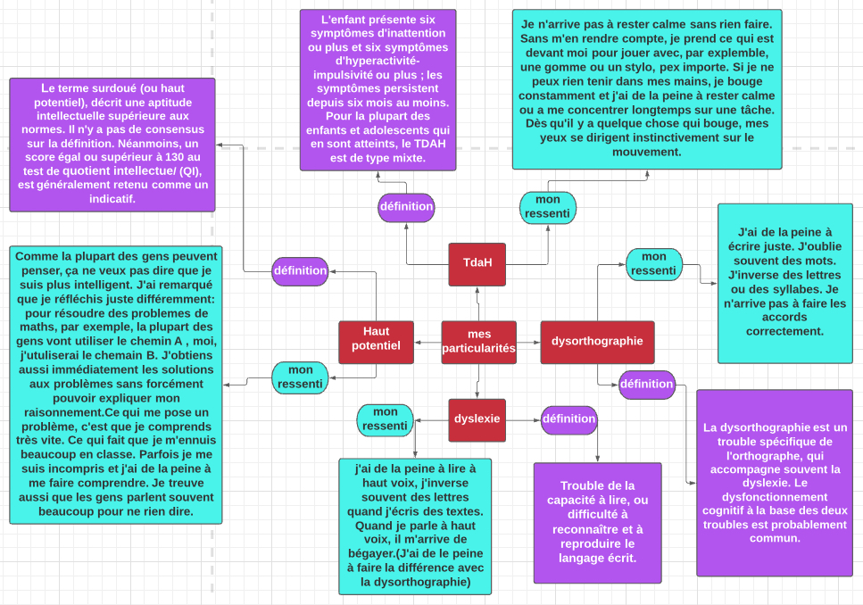 Mind map crée par Monsieur Antoine Ramirez 15 ans